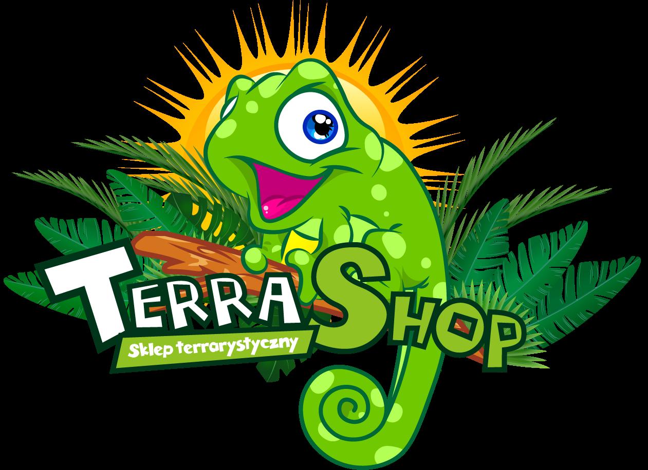 blog TERRA SHOP